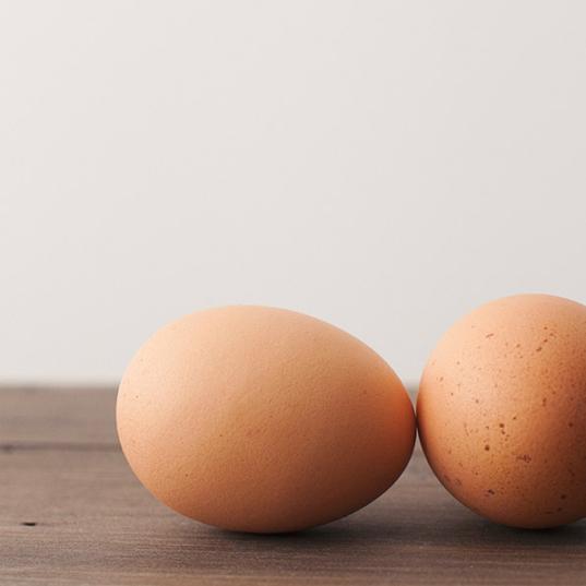 huevo y salmonella todo lo que tienes que saber