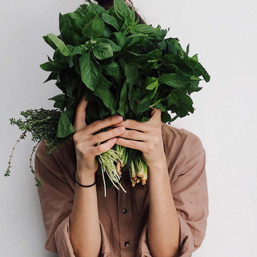 diferencias vegano y vegetariano